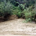 2 Debris from dry creek after storm. Las Flores Cyn.2-15-1986 (Medium)